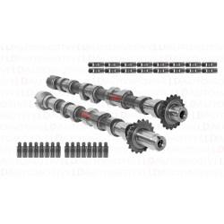 Zestaw Wałków Rozrządu 0801.AC 0801.AE Citroen 2.0 HDI Fiat 2.0 JTD