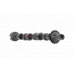 Wałek Rozrządu 0801.EX Citroen Peugeot 2.2 HDI 16V żeliwo